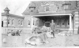 Roberts LeBoutillier in Barnyard